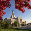 Open-Class A-Brady Smith-LDS Temple, Bountiful, Utah