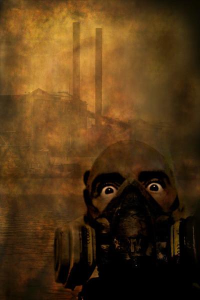 2nd - Toxic