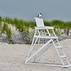 Wild Birds-Debra Smith-Avalon Life Guard Stand