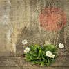 Vegetation-Creative-June White-In Remembrance