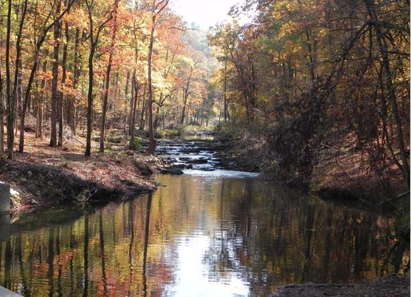 autumn stream by Chuck Mazyrack