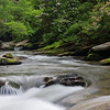 Nature - Class A - Gisela Danielson - French Broad River