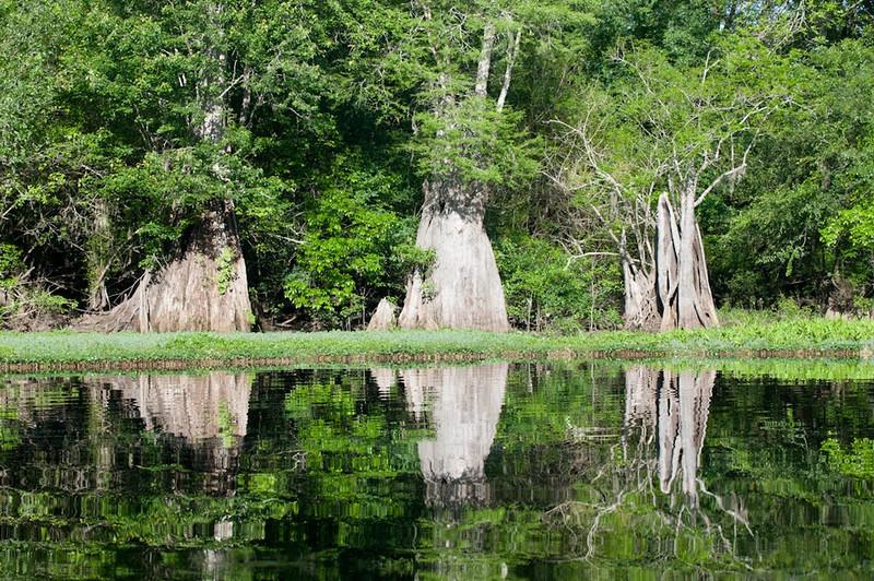Nature - Class A - Chris Christiansen - Water Reflection