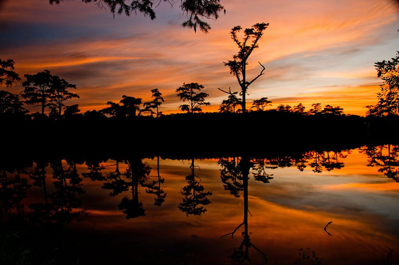 Nature - Class A - Don Hiscott - Cypress Pond Sunset