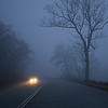 Night Photography - Class A - Jim Davis - Foggy Road