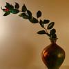 Still Life - Class A - Gary Magee - Simple Beauty