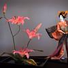 Still Life - Class A - HM - Gisela Danielson - Contemplation