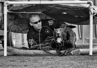2012 Desert Dog Police  K9 Trials (Scottsdale, AZ.)