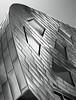 Metallic Curves