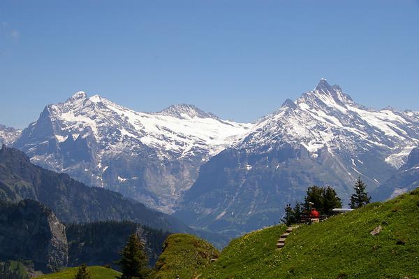 Christine Matthews - Alpine View