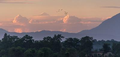 Christine_Himalayan Evening-7966