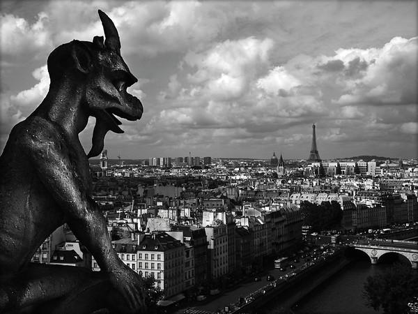 Paris Sentry