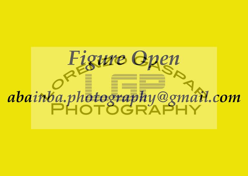 IMG_9153B