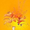 Creative-Class A-Grace Hill-Orange Lily