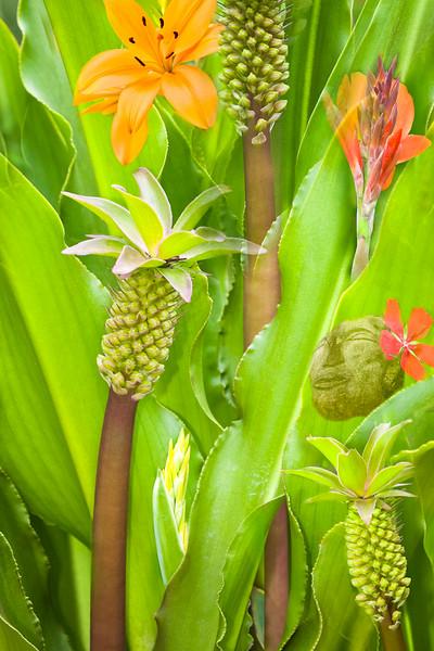 Creative-Class A-Gisela Danielson-Tahitian Dreams