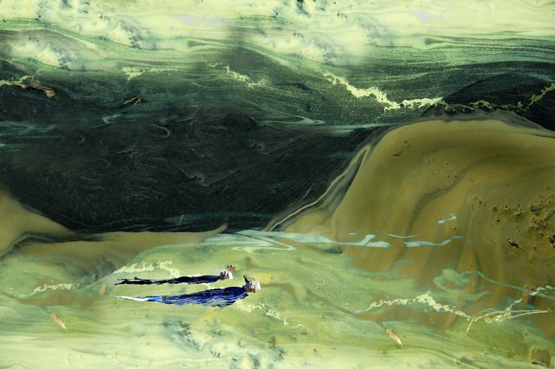 Creative-Class A-June White-Snorkeling Through Pollen