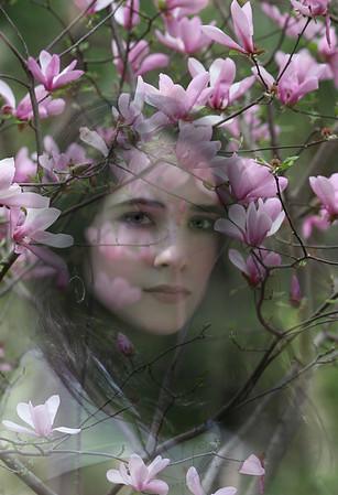 Creative-HM-Class A-Grace Hill-Hidden Beauty