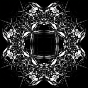 Creative-HM-Class B-Mary New-Diamond Lily