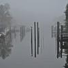 FRH-Class A-Diane McCall-Hunkered Down in the Fog