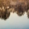 FRH-Class A-John German-Misty Reflections