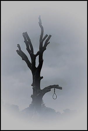 The dying tree