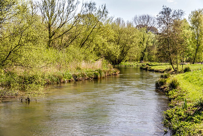 MikeH River Itchen