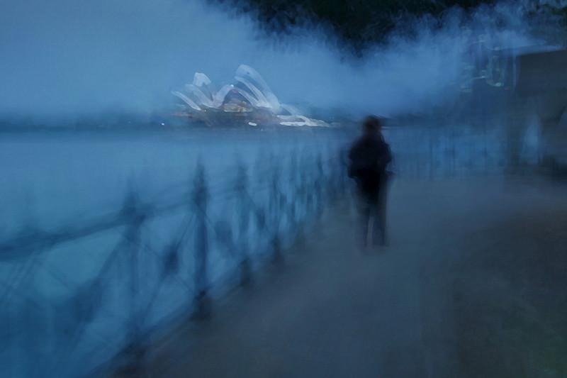 Evening Harbour Stroll