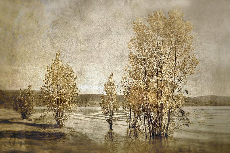 Autumn Lake Jindabyne