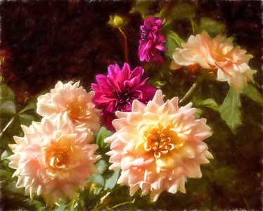 3-Intermediate-Altered_Reality_-_Open-DNP-Jeri_Abel-Dahlias_Photo-painting
