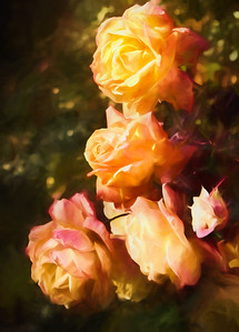 3-Intermediate-Altered_Reality_-_Open-4-Jeri_Abel-Tropical_Sunset_Roses_Photo-painting