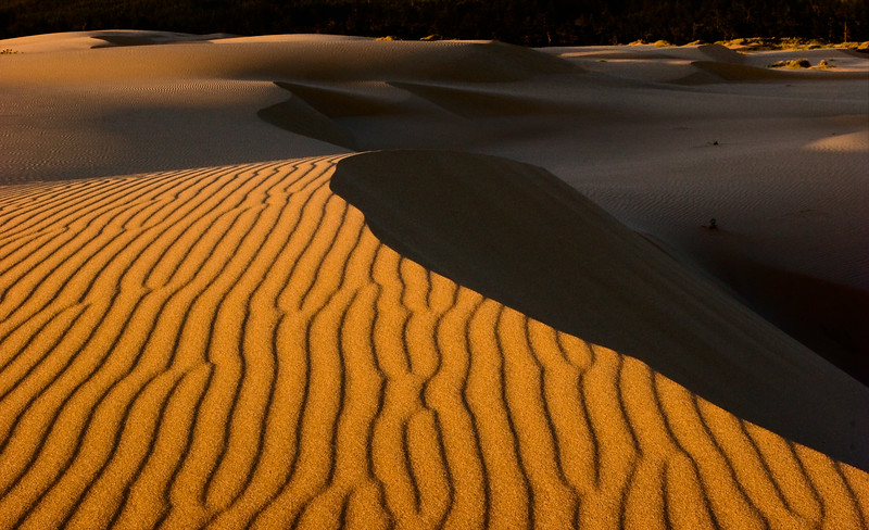 5-Master-Assigned_-_Patterns-2-Eric_Vaughan-Lines_in_the_Sand