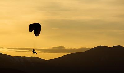 3-Intermediate-Assigned_-_Silhouette-DNP-Lin_Cheong-glider
