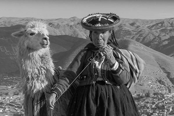 Llama and Friend