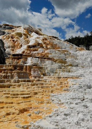 Palette Spring Yellowstone