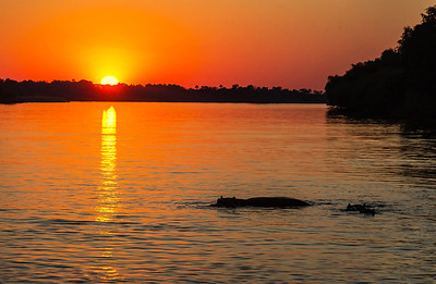 Sunset on the Zambezi