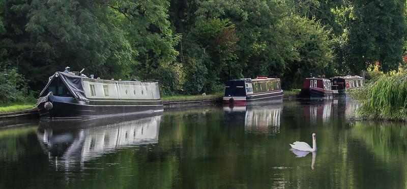 Jackie - Grand Union Canal,Berkhamsted