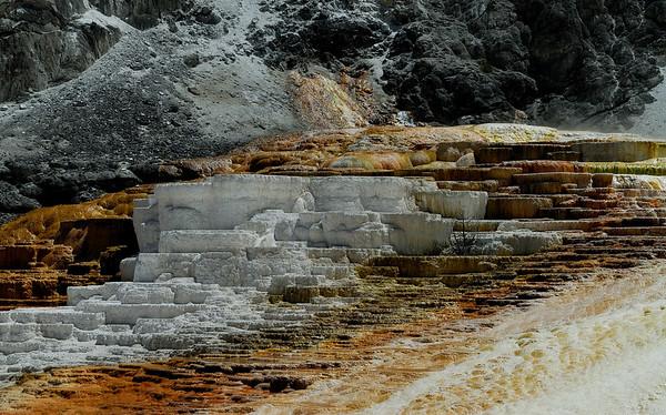 Neil Macindoe - Minerva Terrace-Yellowstone