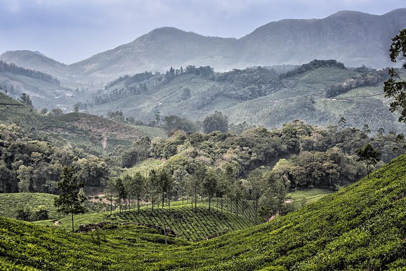 Idian landscape