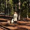 WIN-A-Brenda Hiscott-Winter Walk