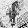 Equus Altus - Leeds Trinity (Commended)