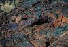 4-Advanced-Tiny_Worlds_Vast_Landforms_Within_Reach-DNP-Heike_Bammann-Volcanic_Cave