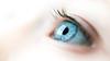 4-Advanced-Open-DNP-Kenyon_Sharp-Blue_eyed_girl