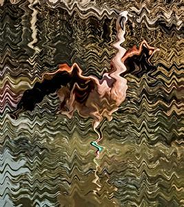 3-Intermediate-Altered_Reality-DNP-Lloyd_Blackburn-Flamingo_Waving