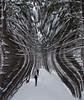 I145_warped_winter_ski