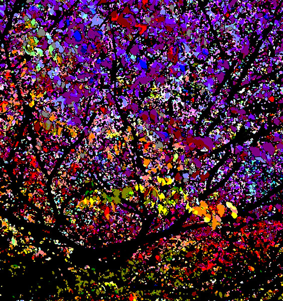 A66_Fantasy_Among_the_Leaves_1_