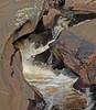 A167_Nature_2015_-_Raney_-__Pumphouse_Creek
