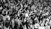 A66_The_Audience_BW