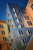 MIT Campus Residence By Frank Gehry