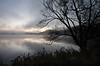 Haliburton Morning Mist