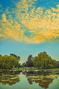 Broomfield Park - Love those mackerel skies